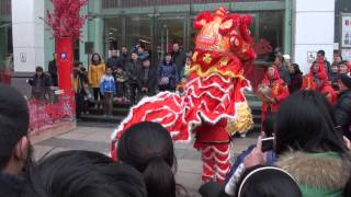 preview picture of video 'Danse du dragon à l'occasion du nouvel an chinois à Nanchang - Février 2013 1/3'