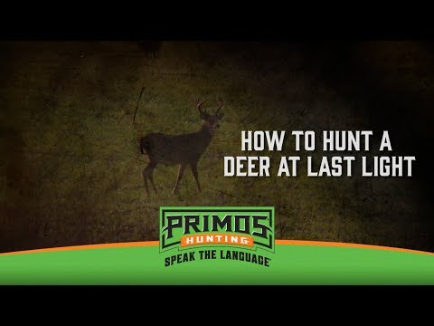 How to Hunt a Deer Coming Out at Last Light video thumbnail