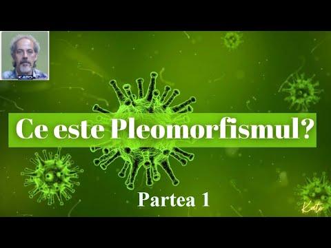 Parazitii in corpul uman