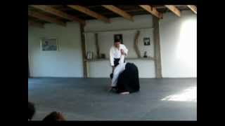 Aikido: Gaining Mechanical Advantage - Kaiten-nage. Dunken Francis Sensei