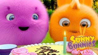Cartoons for Children | BUNNY BIRTHDAY | SUNNY BUNNIES | Funny Cartoons For Children