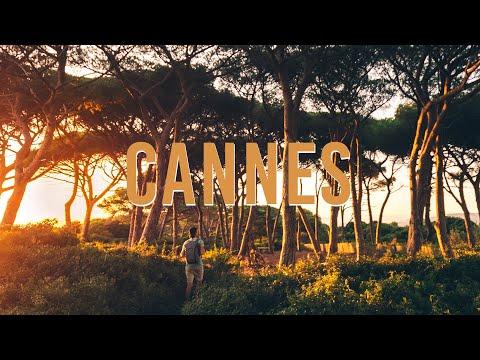 Appartement 90.03 m² - 4 pièces - Cannes (06400)