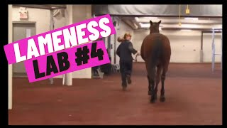 Lameness Lab #4: Is this horse lame?
