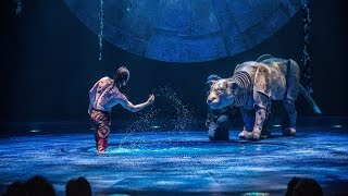 Behind the scenes at Cirque du Soleil's Luzia