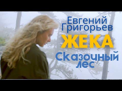 Жека - Евгений Григорьев - Сказочный лес (Lyric-video)