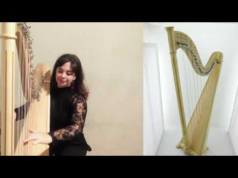 Tulip 40 review of mikel harps by a harpist