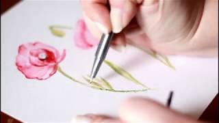 Painting a Poppy