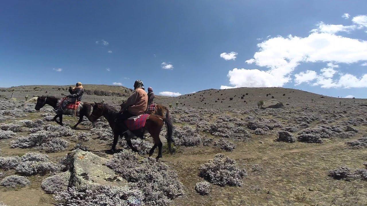 Harar & The Bale Mountains, Ethiopia