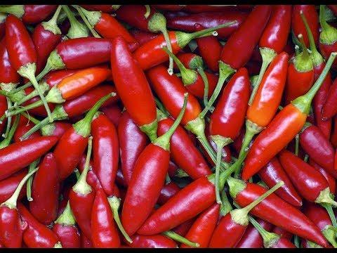 quali sono gli alimenti naturali per la salute della prostata