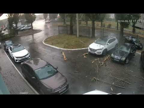 В Воронеже камера слежения зафиксировала момент падения на машину большой ветки