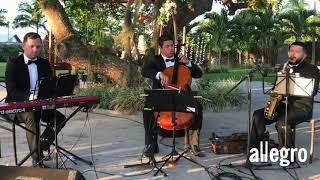 Um Amor Puro   Instrumental (Djavan)   Música Para Casamento   Natal  RN