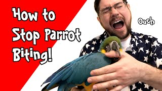 Stop Parrot Biting - Guaranteed Way to Prevent Bites!