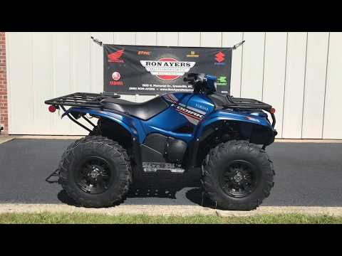 2019 Yamaha Kodiak 700 EPS SE in Greenville, North Carolina - Video 1