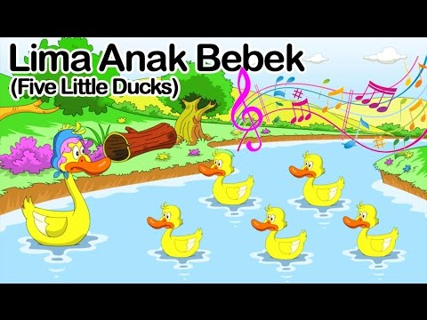 Lima Anak Bebek ( Five little ducks )  | Lagu Anak Indonesia