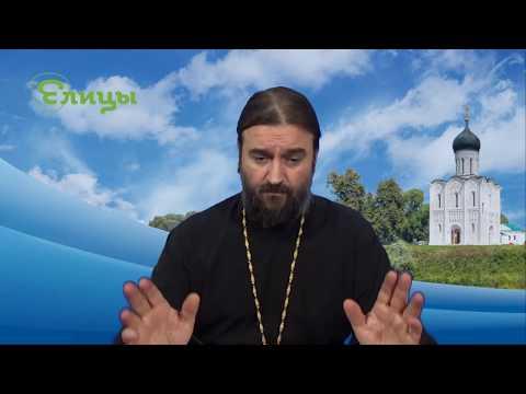 Кто отвечает за пролитую кровь? Протоиерей Андрей Ткачев