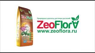 Грунт для орхидей ZeoFlora субстрат для выращивания, 2,5 литра от компании ЦеоТрейдРесурс - видео