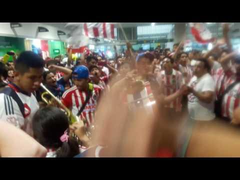 """""""Recibimiento CHIVAS Aeropuerto de la Cd de México."""" Barra: La Irreverente • Club: Chivas Guadalajara"""