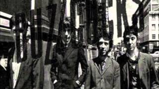 16 Again - The Buzzcocks Peel Sessions 1977-79