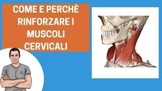 Esercizi per cervicale: come rinforzare i muscoli del collo
