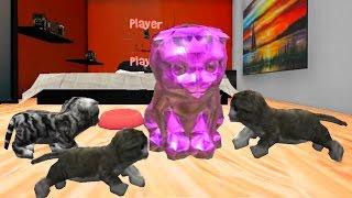 СИМУЛЯТОР КОТА 🐱🐱🐱 #18 ИГРАЕМ С КОТЯТАМИ мульт-игра про котят развлекательное видео