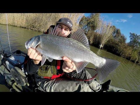 Scatola per inverno pescando da galvanizzazione