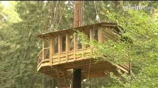 Casas en los árboles en Zeanuri