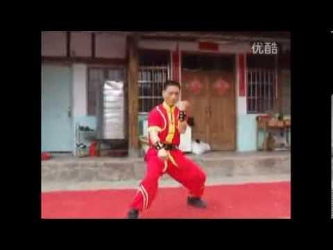 Long Zun Quan, Southern Dragon Boxing, Ningde prefecture, Fujian