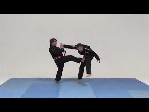 Jukoshin Ryu Jiu Jitsu, Hanshi Eduardo Sánchez