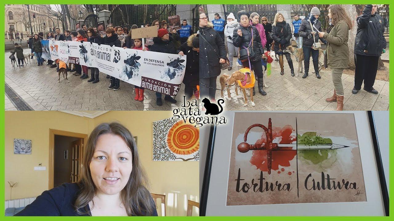 MY VEGAN LIFE #5 | VEGAN FEST ALICANTE | PROTESTA NO LA CAZA ALBACETE | BUS PORK LOVER