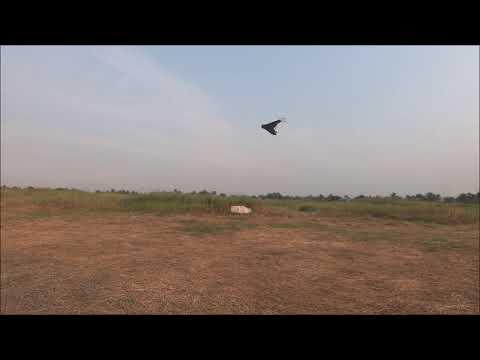 ardupilot-arwing-reverse-thrust-landings-test