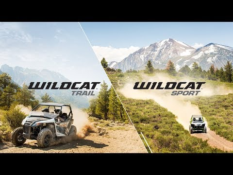 2019 Arctic Cat Wildcat Trail in Escanaba, Michigan - Video 1