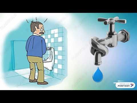 Castoreum per la prostata
