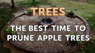 The Best Time to Prune Apple Trees