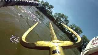 How to catch a carp?