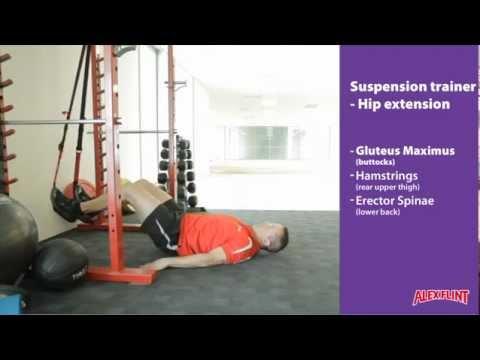 Suspension trainer hip extension