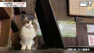 Vol.107「にゃん旅鉄道」駅舎を見学するにゃ!