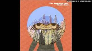 The Appleseed Cast- End Frigate Constellation