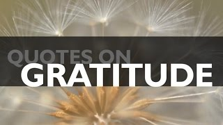 🔴 Quotes On Gratitude - Top 10 Quotes On Gratitude