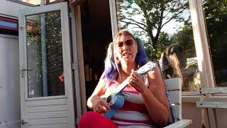 ukelele cover - k's choice - old woman