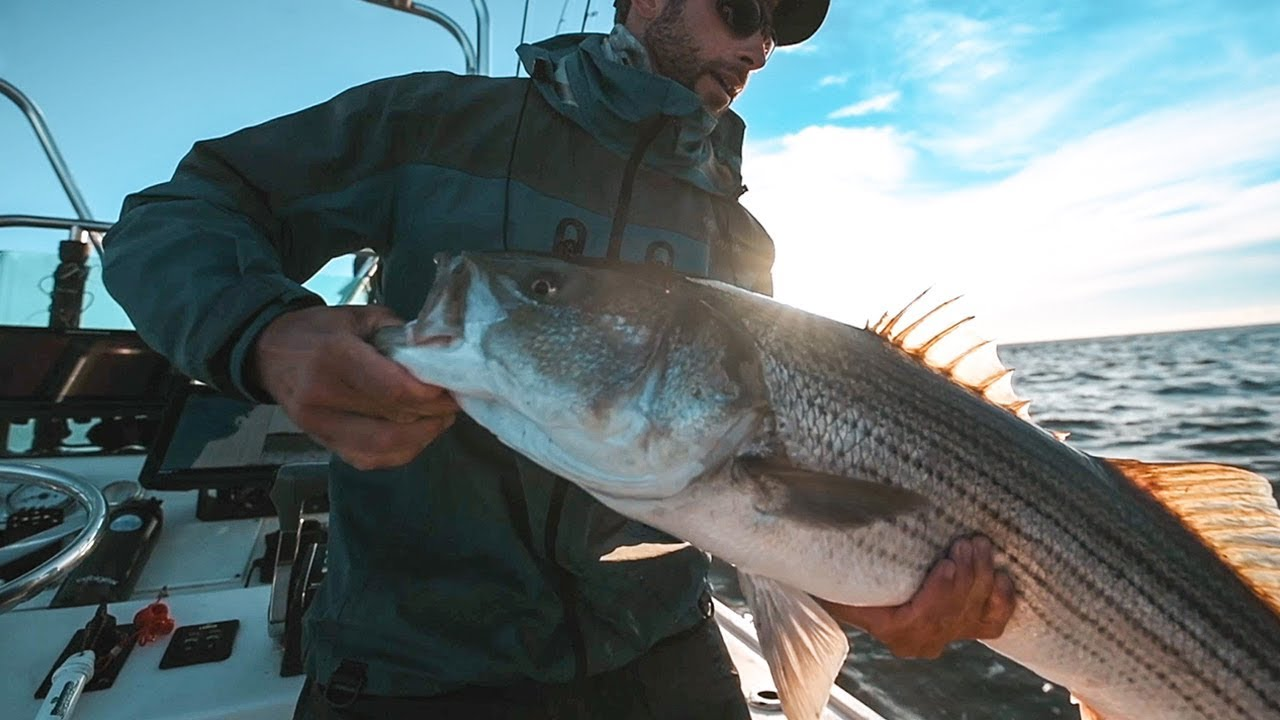 New Approaches for New England Striped Bass Fishing