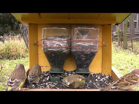 Zahradn 237 Stavby Česk 253 Kutil Cz