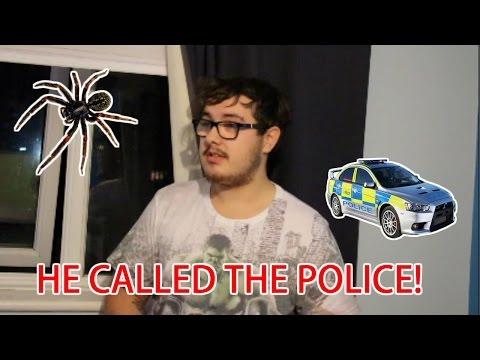 ULTIMATE SPIDER SCARE PRANK