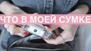Что в моей сумке 2017/Ксения Вострикова (рек)