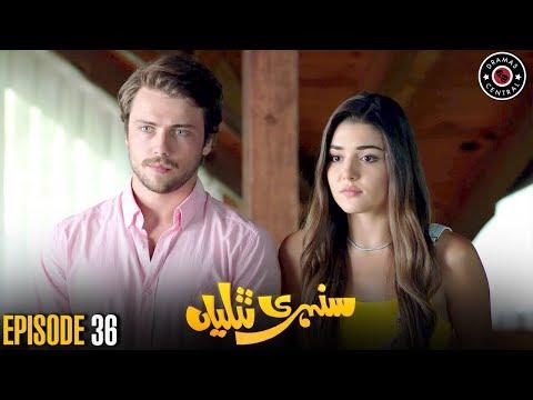 Sunehri Titliyan | Episode 36 | Turkish Drama | Hande Ercel | Dramas Central