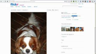 Selecting and Sorting Slickr Flickr Photos By Date