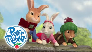 Peter Rabbit   Sneaking Into Farm | Cartoons For Kids