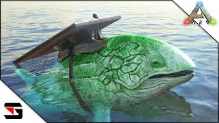 leedsichthys tame - 免费在线视频最佳电影电视节目 - Viveos Net