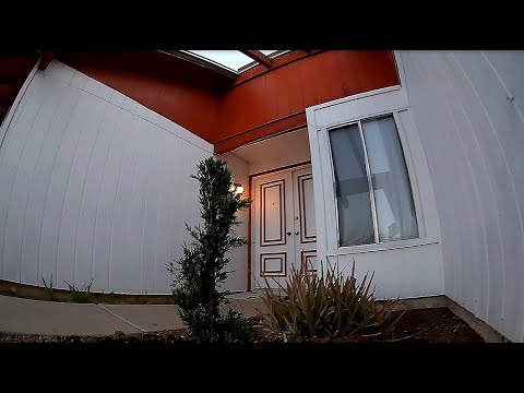 SPCMaker Mini Whale HD Pusher - FPV Early April Morning Back Yard Tree\'s Planted 2s Batts