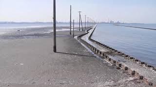 「海の中に立つ電柱」千葉県江川海岸観光