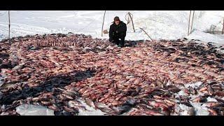 Отчеты о рыбалке на реке созь